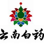 南華金融 Sctrade.com 公司報告 - 雲南白藥集團股份 (000538 CH)